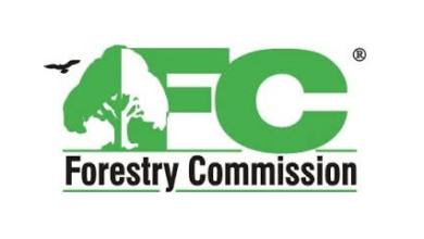 Photo of Forestry Commission sets up committee to probe illegal timber consignment