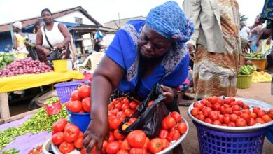 Photo of Police to escort tomato transporters, traders over robbery attacks