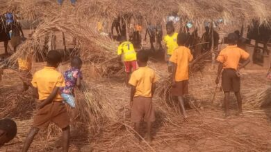 Photo of Kechiebi-Asuogya School Cries For Classrooms As Pupils use Classes Hours To Build Structure