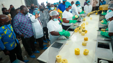 Photo of Bawumia commissions 77th One District One Factory in Nsawam