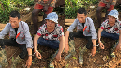 Photo of Security Council arrests two Chinese illegal miners